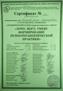 intensiv2015_Pisareva_Olga